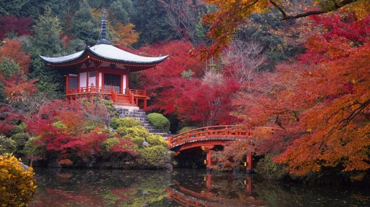 Paysage automne Kyoto Daigo