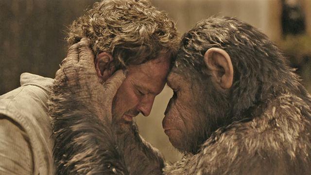 La planète des singes 2014 singe et homme