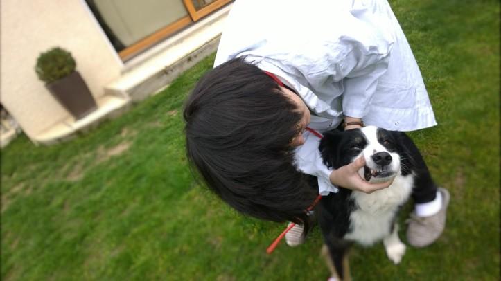 portrait travailler avec les animaux chien agressif mauvaise dent